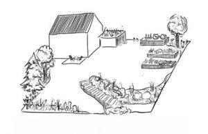 gardena matig complexe tuin - sileno city robotmaaier